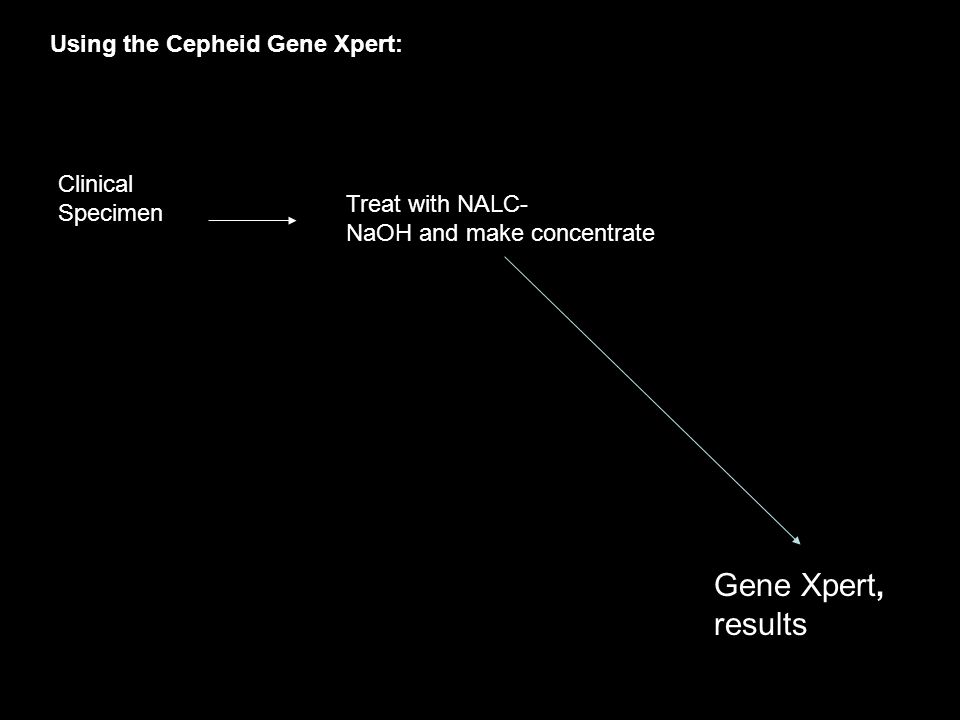 Gene Xpert, results Using the Cepheid Gene Xpert: Clinical Specimen