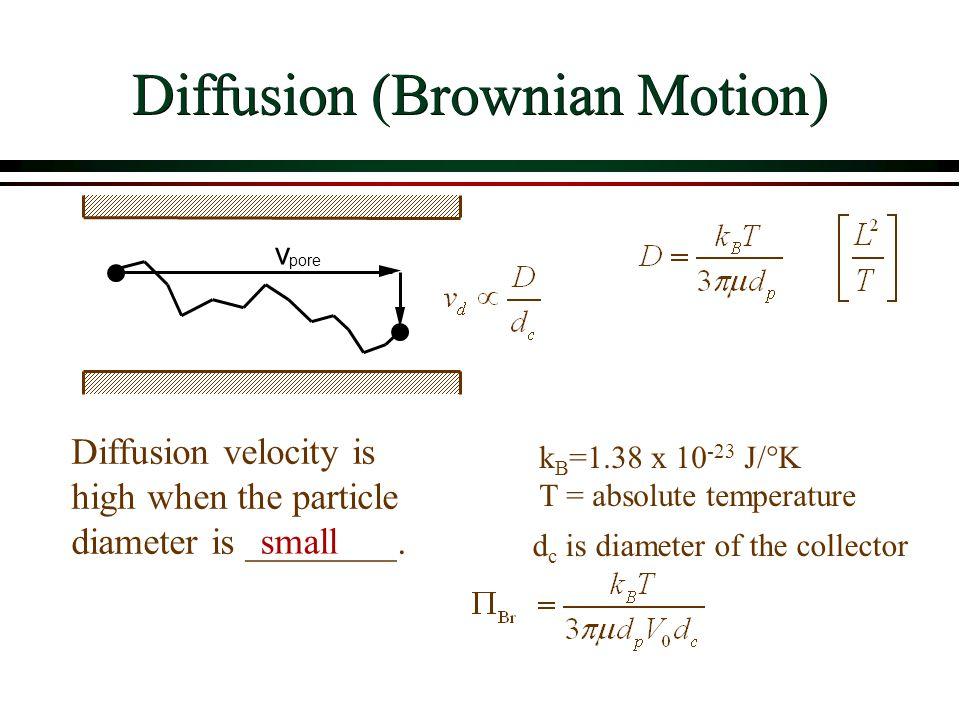 Diffusion (Brownian Motion)