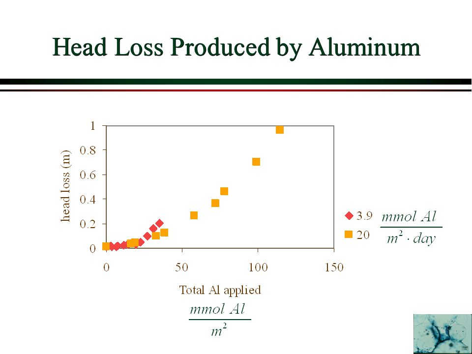 Head Loss Produced by Aluminum