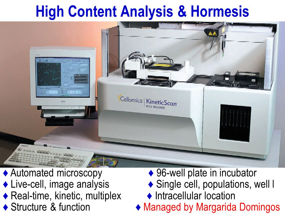 High Content Analysis & Hormesis