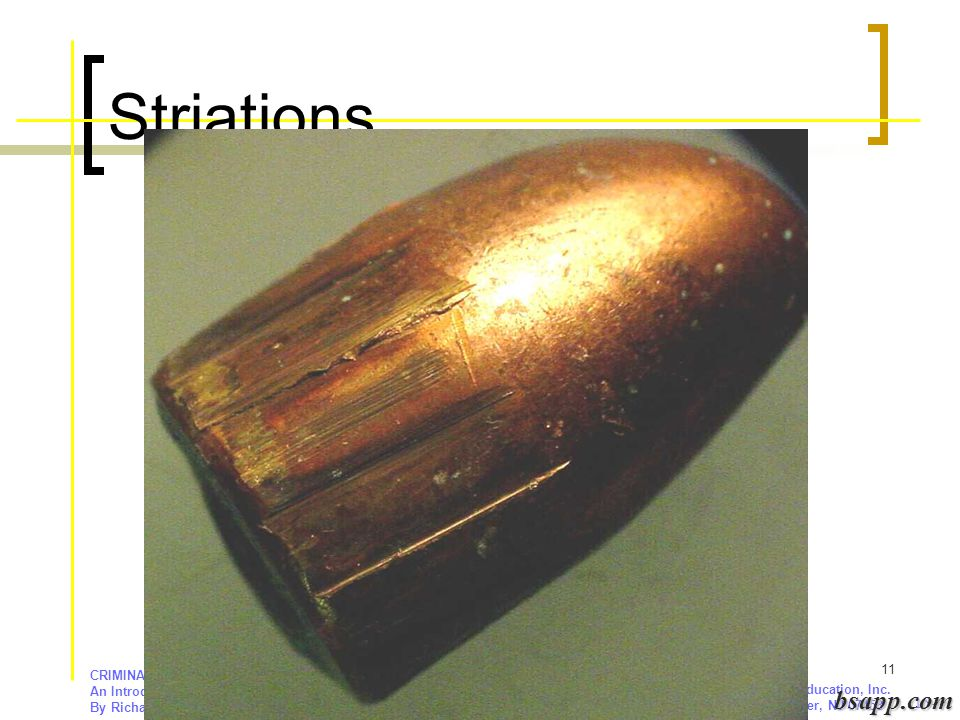 Striations bsapp.com