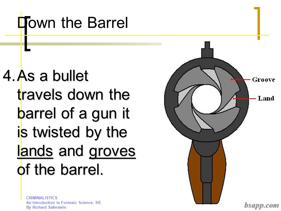 Down the Barrel As a bullet travels down the barrel of a gun it is twisted by the lands and groves of the barrel.