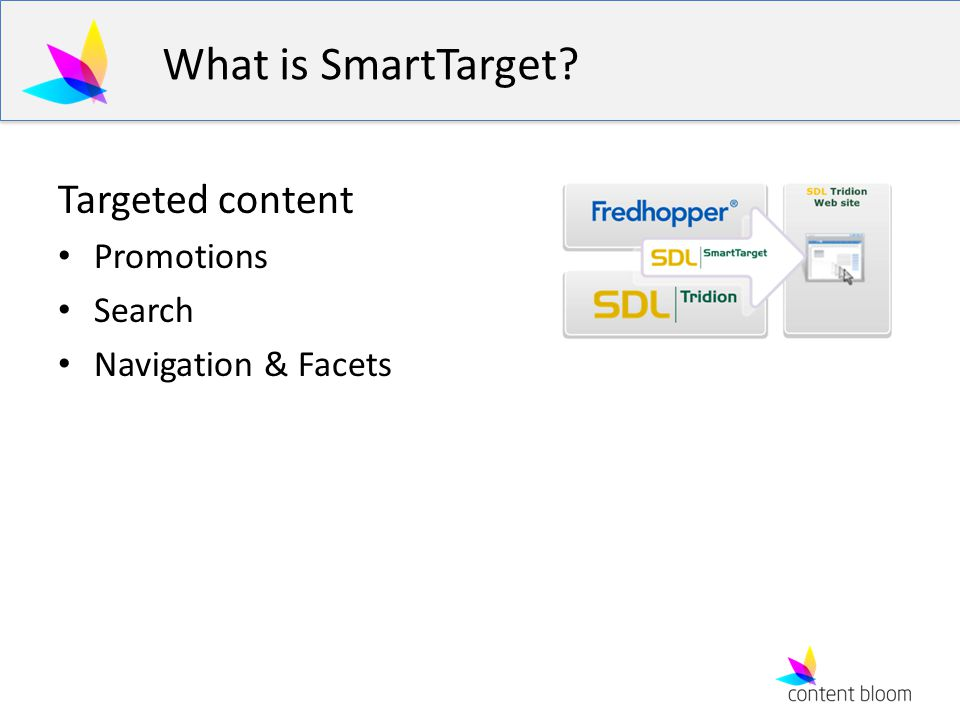 What is SmartTarget Targeted content Promotions Search