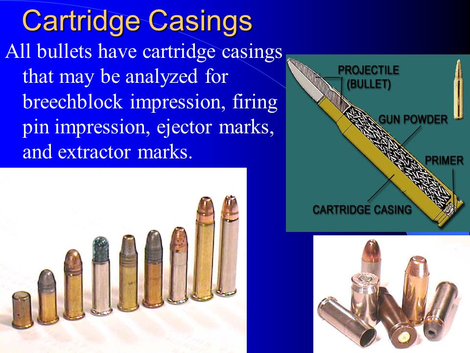Cartridge Casings