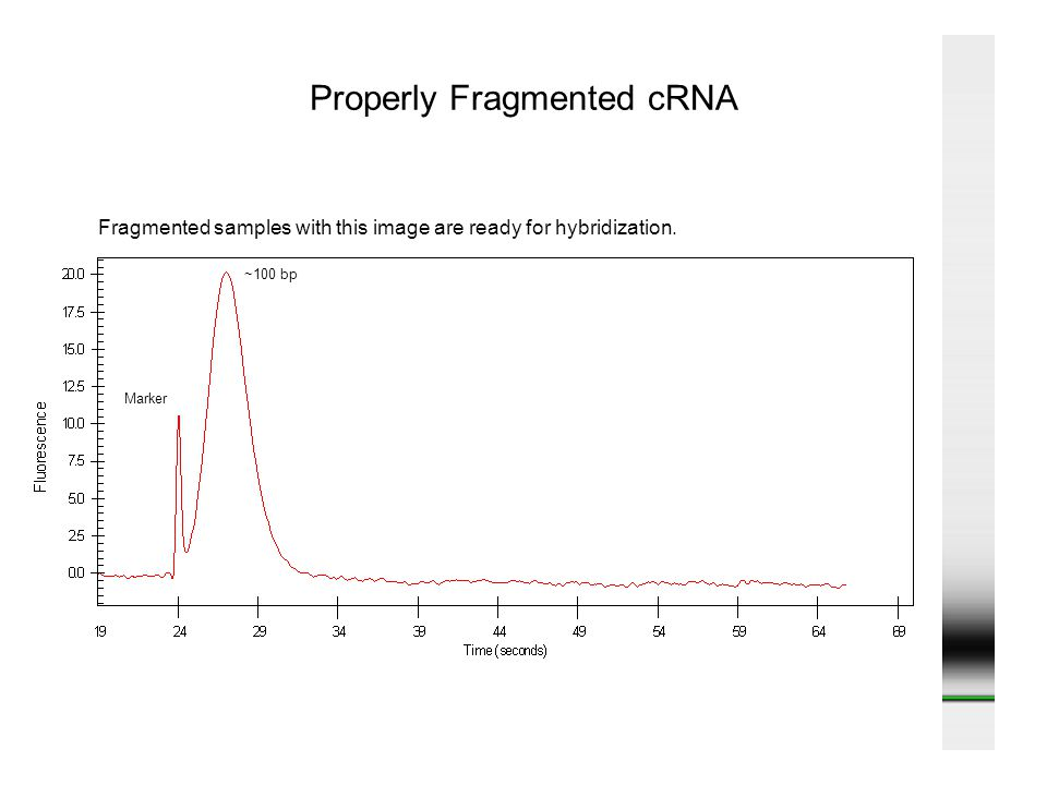 Properly Fragmented cRNA