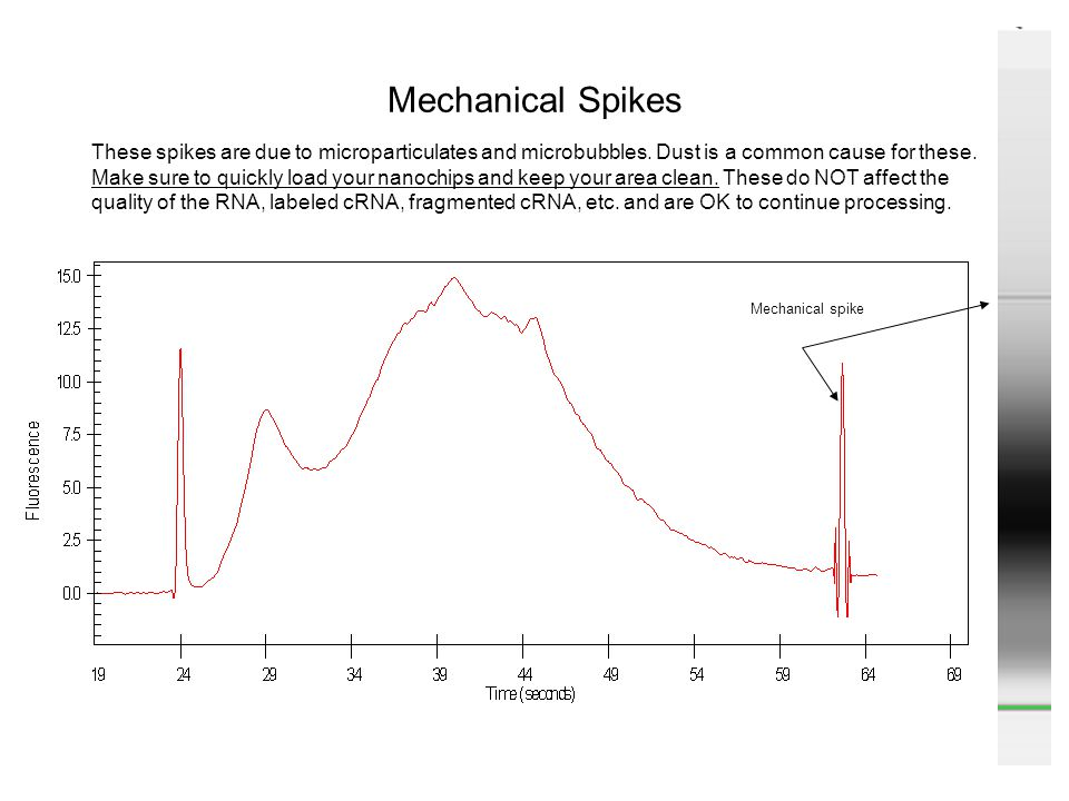 Mechanical Spikes These spikes are due to microparticulates and microbubbles. Dust is a common cause for these.