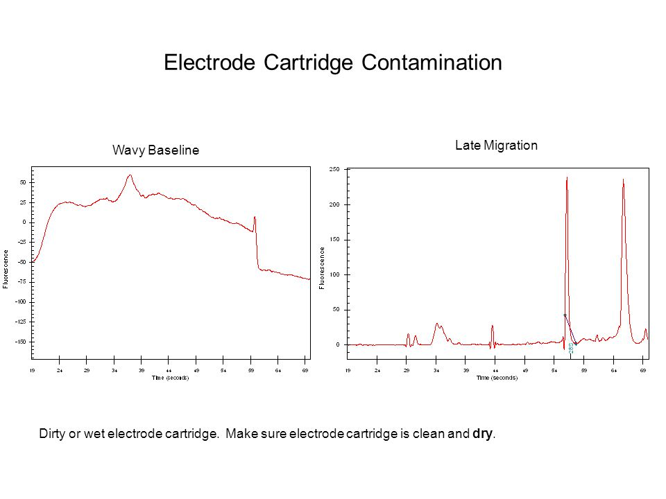 Electrode Cartridge Contamination
