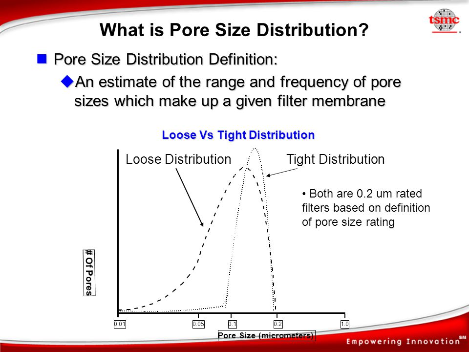 What is Pore Size Distribution