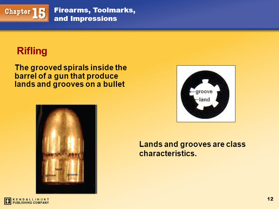 Rifling The grooved spirals inside the barrel of a gun that produce lands and grooves on a bullet.