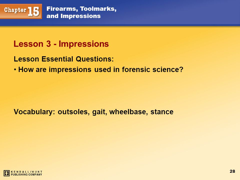 Lesson 3 - Impressions Lesson Essential Questions: