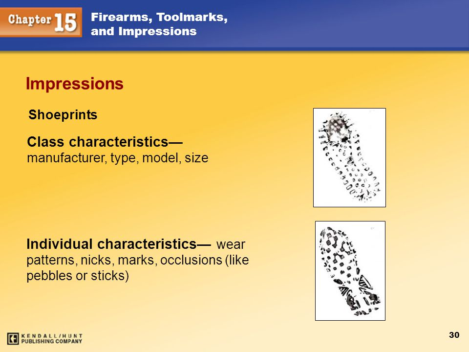 Impressions Class characteristics— manufacturer, type, model, size