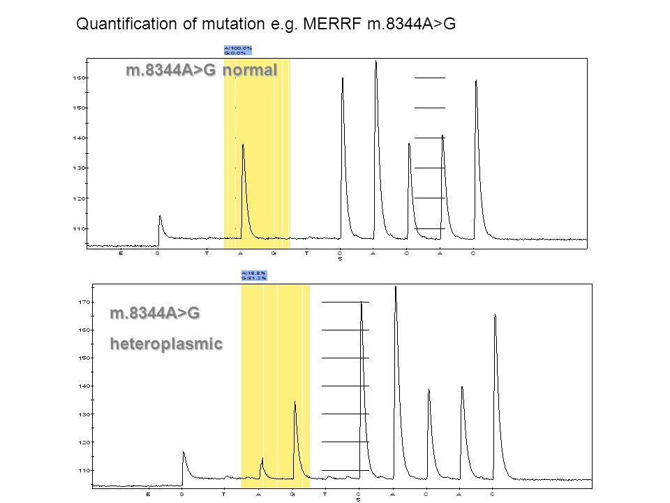 Quantification of mutation e.g. MERRF m.8344A>G