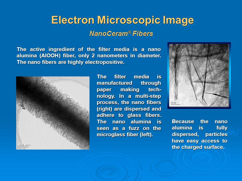 Electron Microscopic Image
