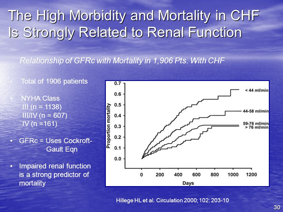 The High Morbidity and Mortality in CHF Is Strongly Related to Renal Function