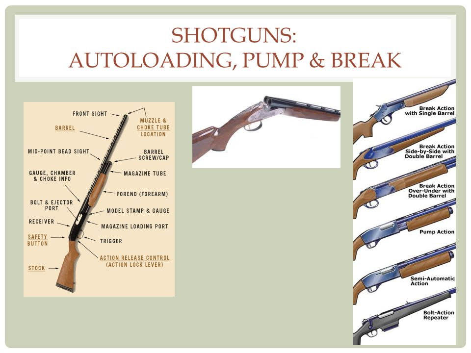 Shotguns: Autoloading, Pump & Break