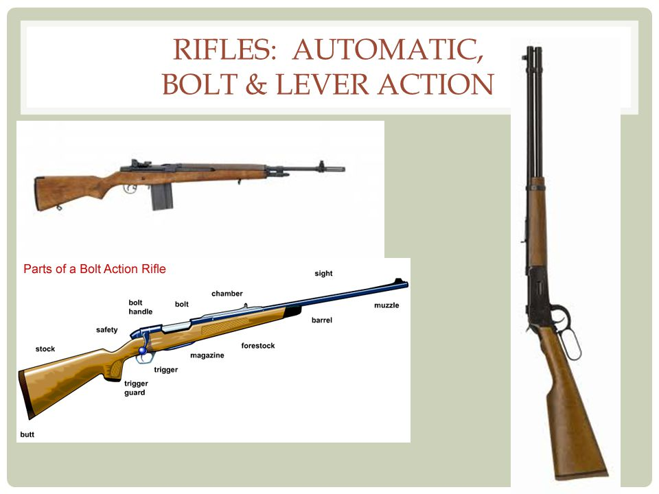Rifles: Automatic, bolt & lever action