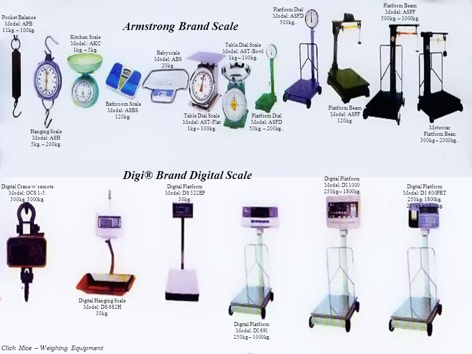 Digi® Brand Digital Scale