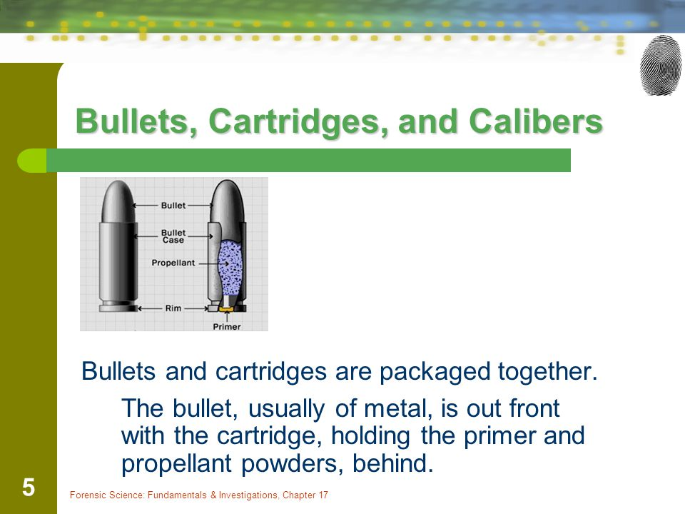 Bullets, Cartridges, and Calibers