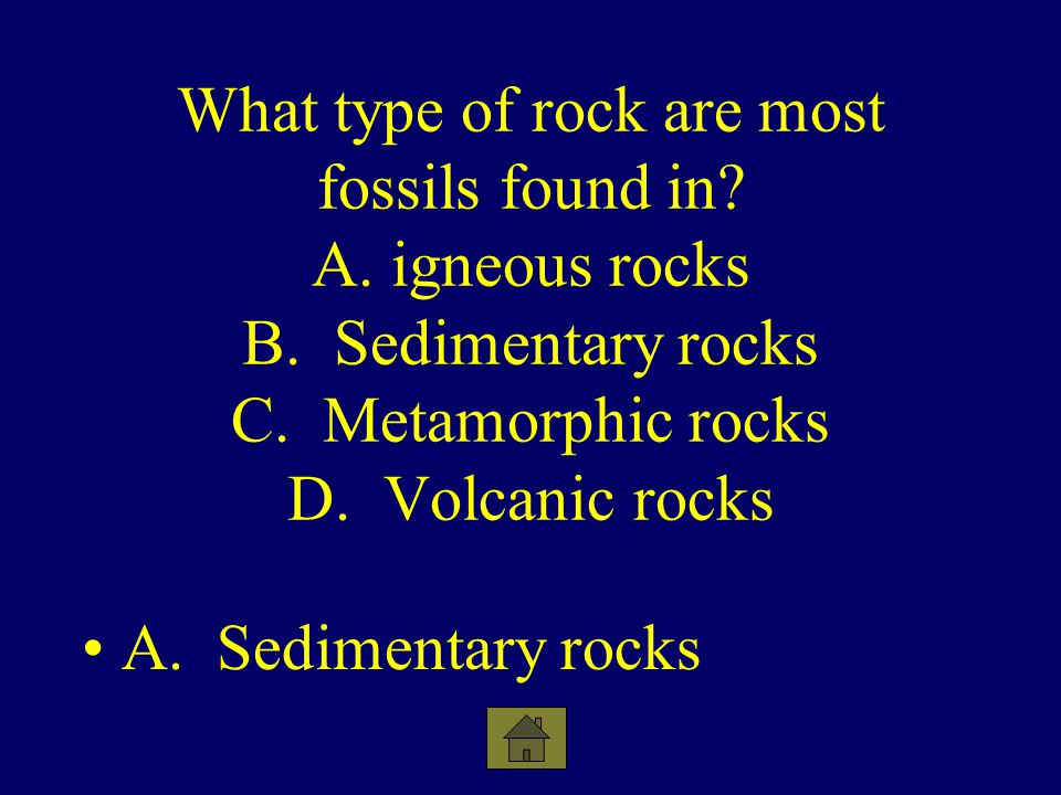 What type of rock are most fossils found in. A. igneous rocks B