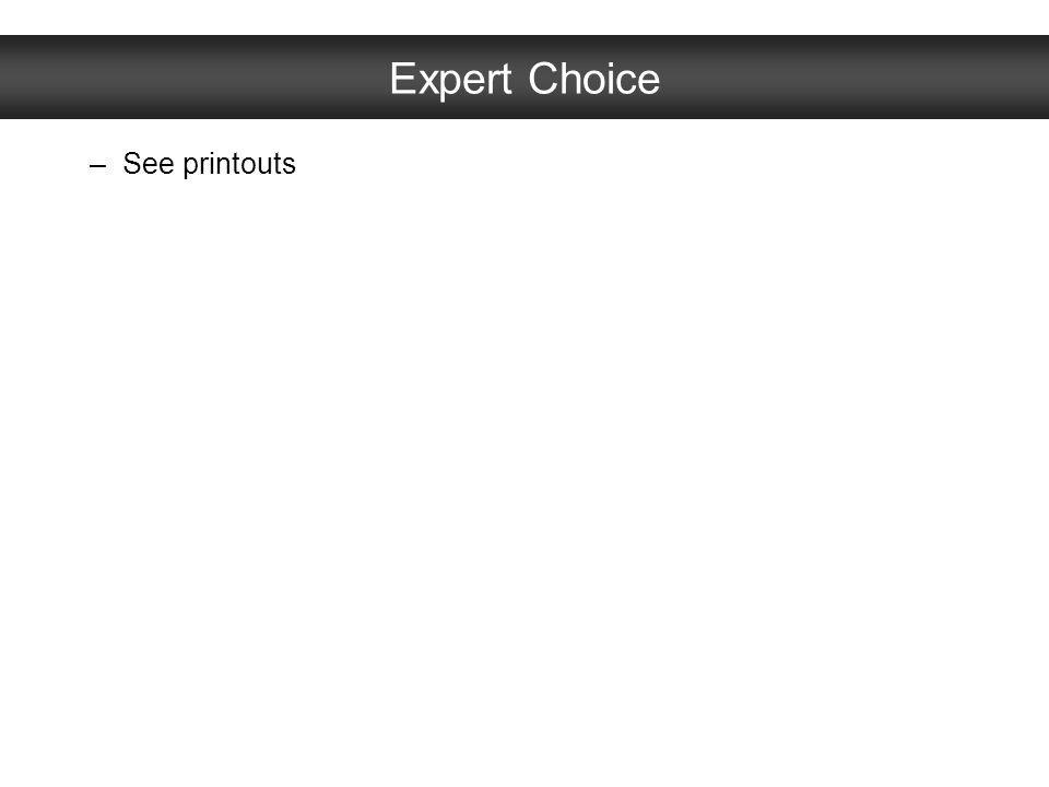 Expert Choice See printouts