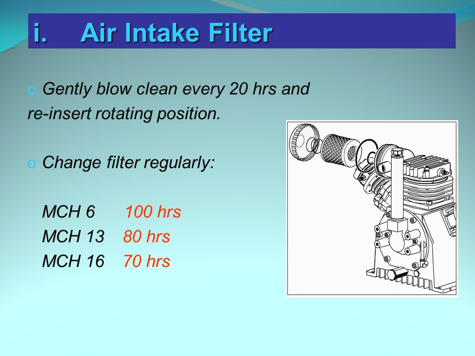 i. Air Intake Filter Gently blow clean every 20 hrs and