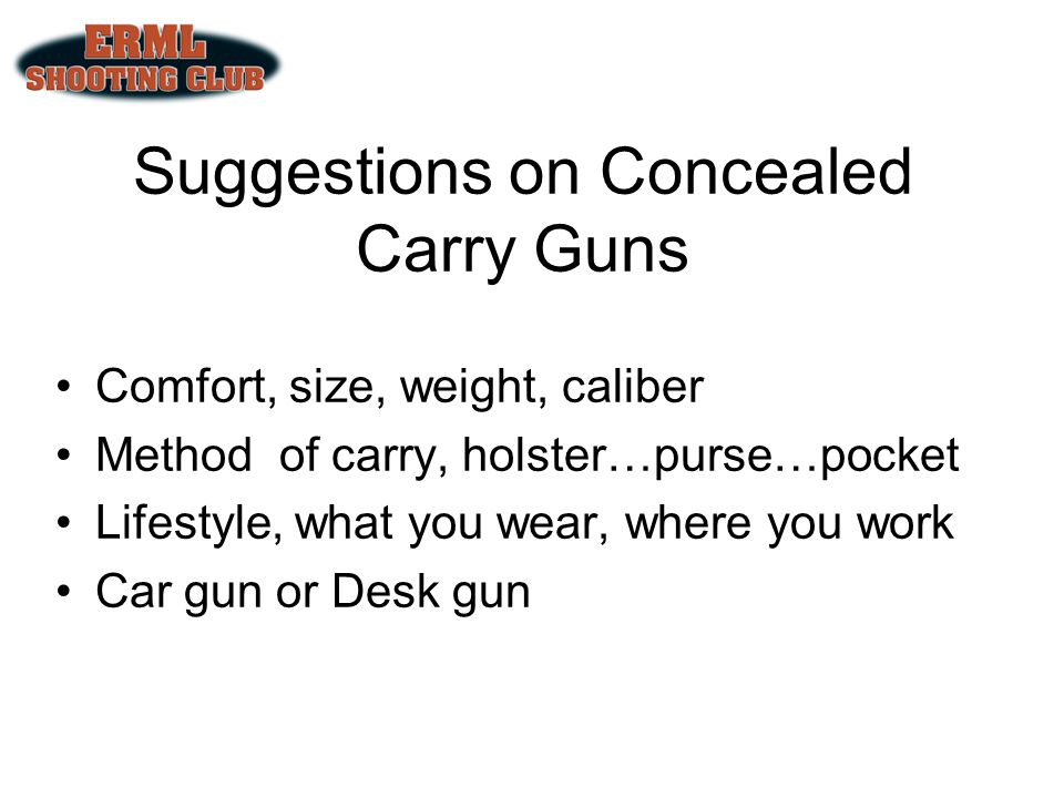 Suggestions on Concealed Carry Guns