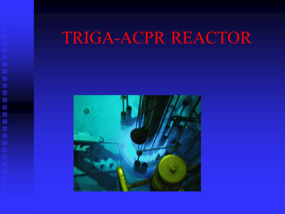 TRIGA-ACPR REACTOR