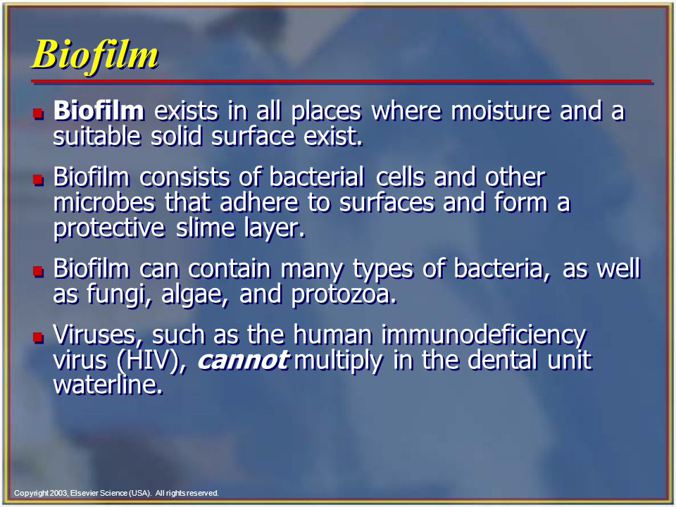 Biofilm Biofilm exists in all places where moisture and a suitable solid surface exist.