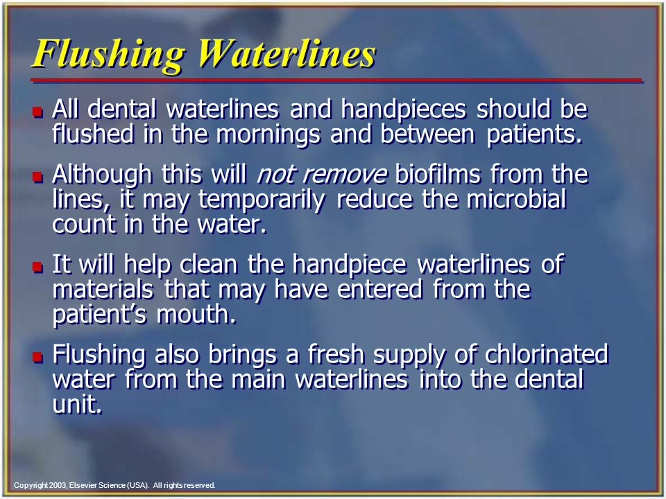 Flushing Waterlines All dental waterlines and handpieces should be flushed in the mornings and between patients.