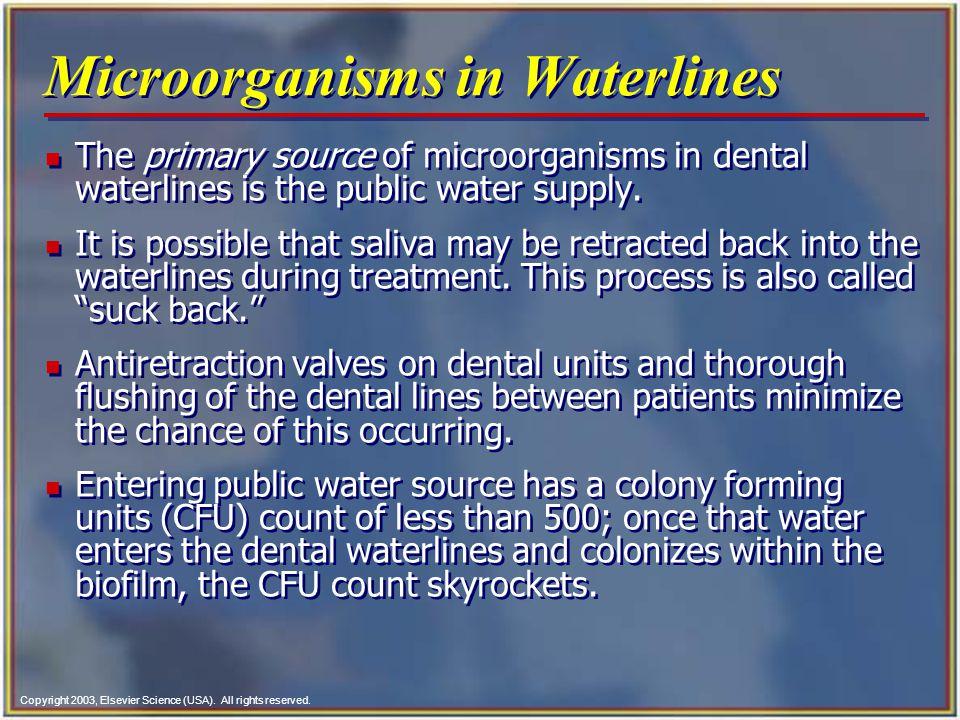 Microorganisms in Waterlines