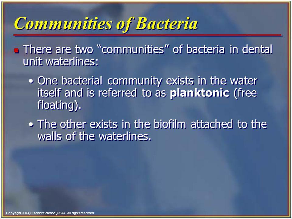 Communities of Bacteria