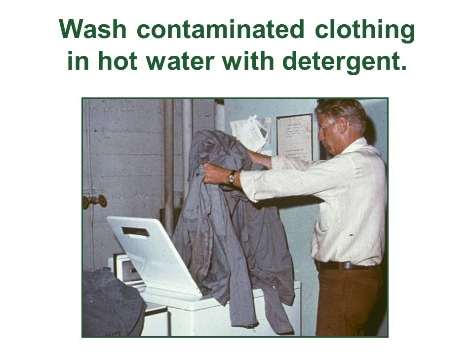 Wash contaminated clothing in hot water with detergent.