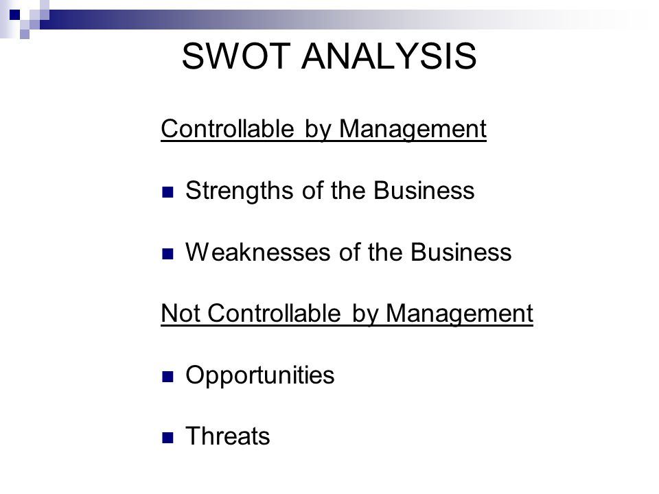 SWOT ANALYSIS Controllable by Management Strengths of the Business
