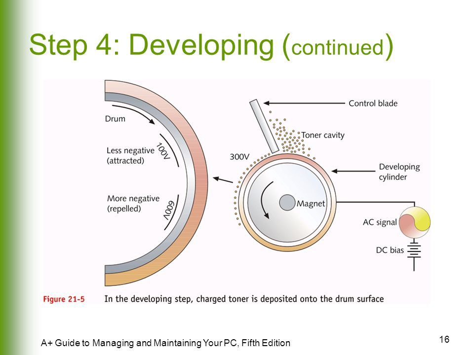 Step 4: Developing (continued)