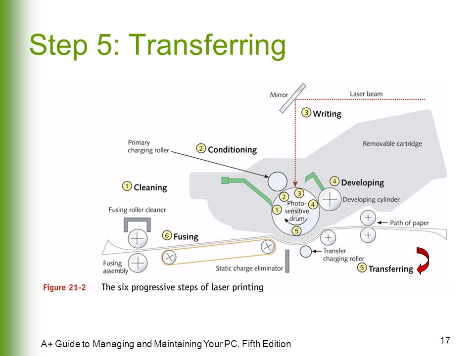 Step 5: Transferring A+ Guide to Managing and Maintaining Your PC, Fifth Edition