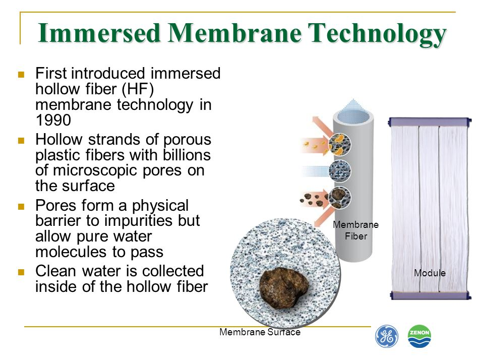 Immersed Membrane Technology