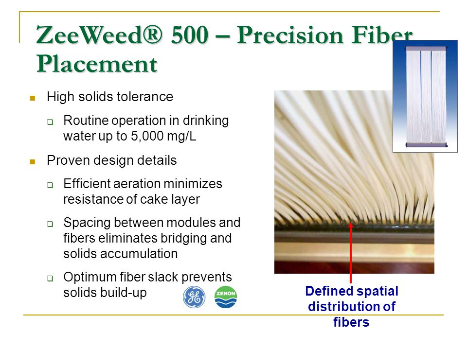 Defined spatial distribution of fibers