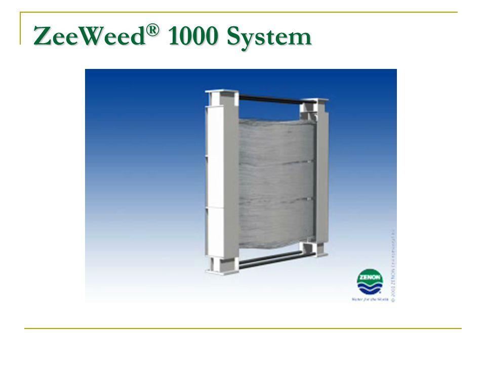 ZeeWeed® 1000 System