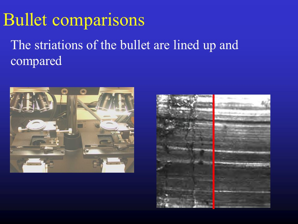 Bullet comparisons The striations of the bullet are lined up and compared