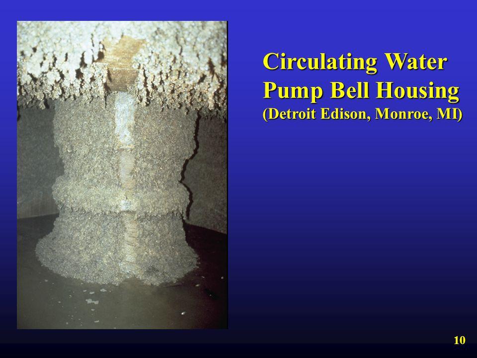 Circulating Water Pump Bell Housing (Detroit Edison, Monroe, MI) 10