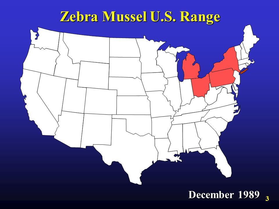 Zebra Mussel U.S. Range December 1989 3