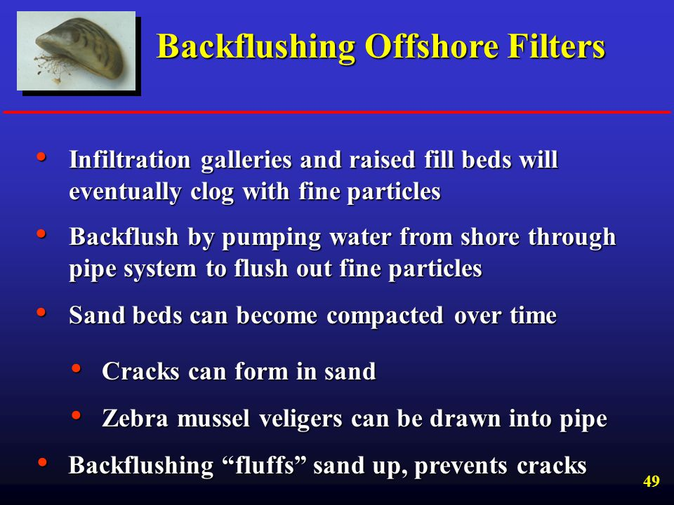 Backflushing Offshore Filters
