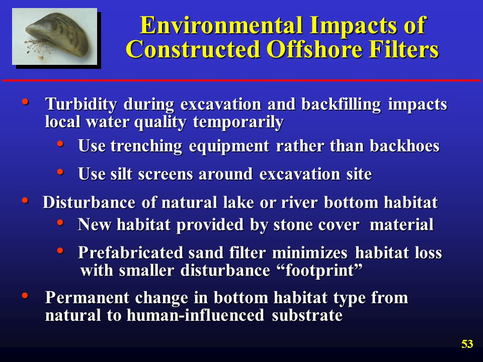 Environmental Impacts of Constructed Offshore Filters
