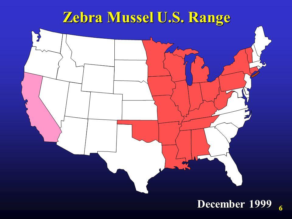 Zebra Mussel U.S. Range December 1999 6