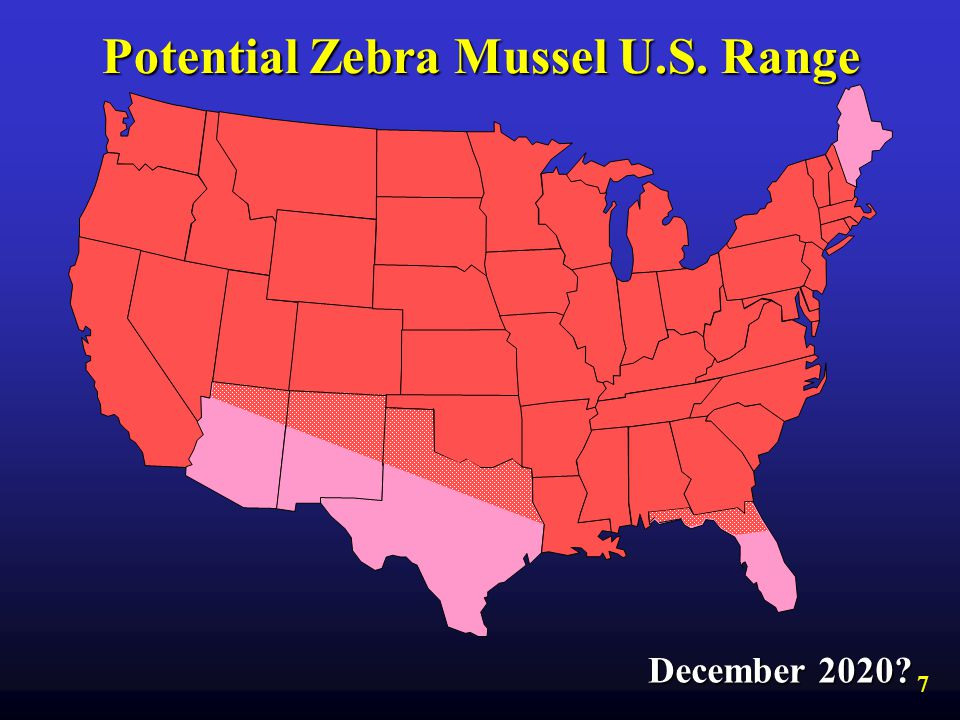 Potential Zebra Mussel U.S. Range