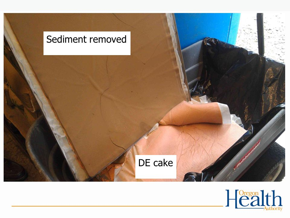 Sediment removed DE cake