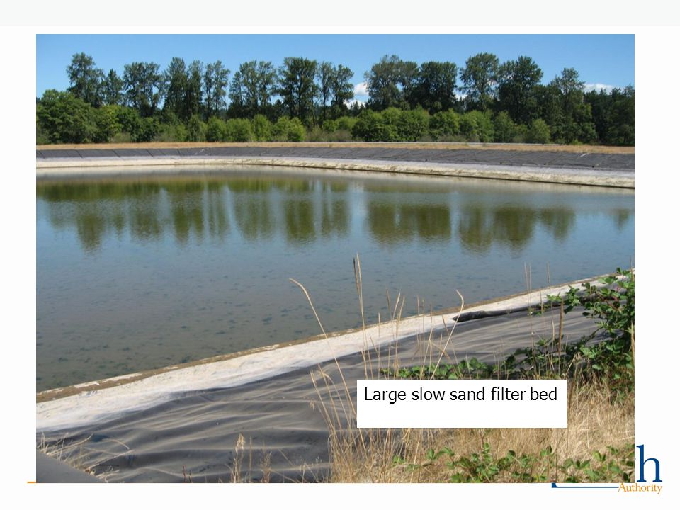 Large slow sand filter bed