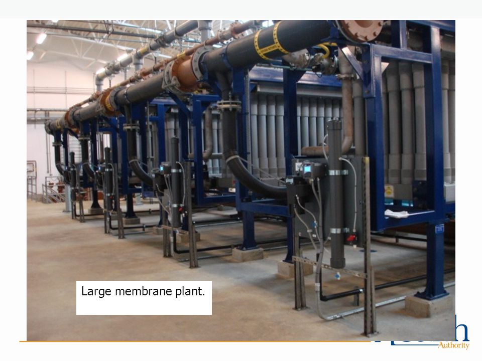 Large membrane plant.