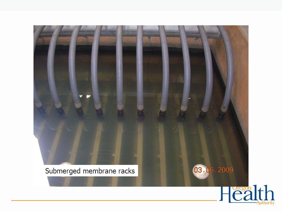 Submerged membrane racks