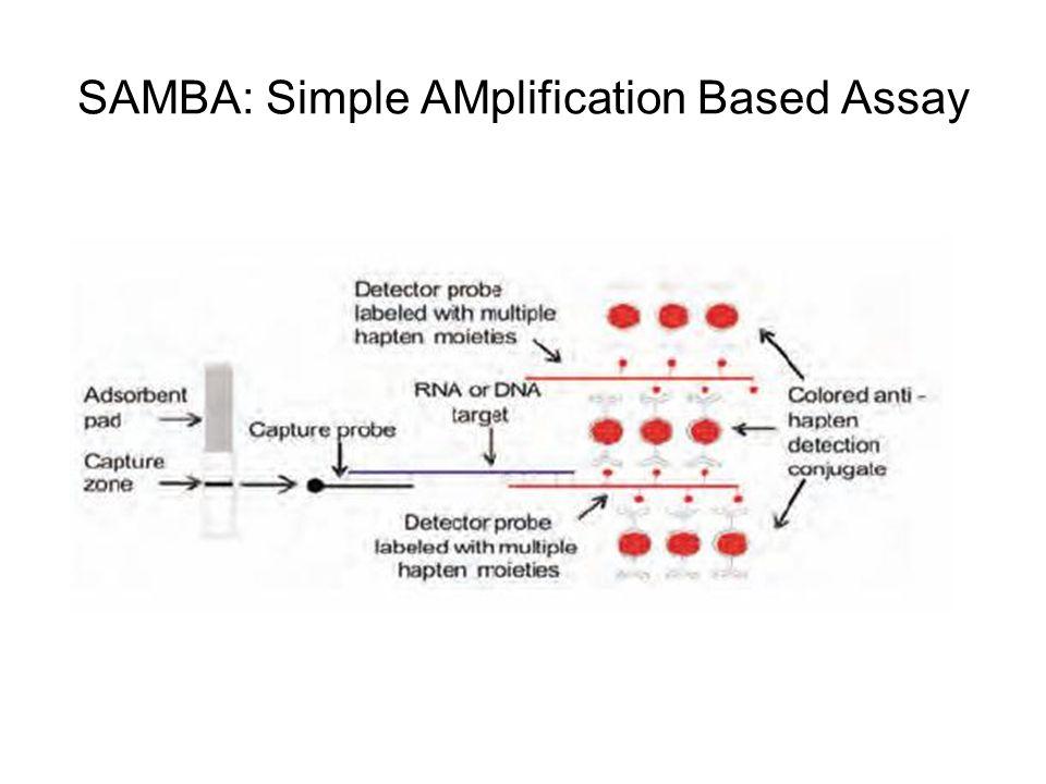 SAMBA: Simple AMplification Based Assay
